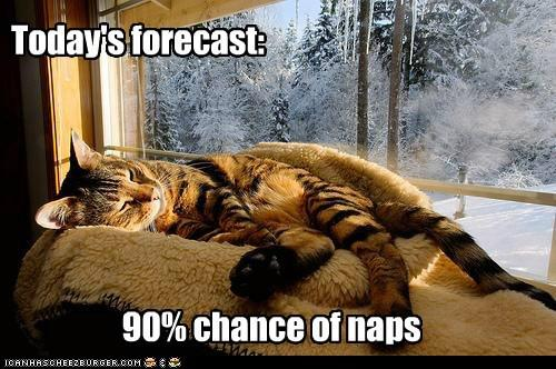 CHANCE OF NAPS