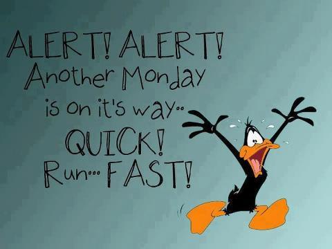 MONDAY--ALERT