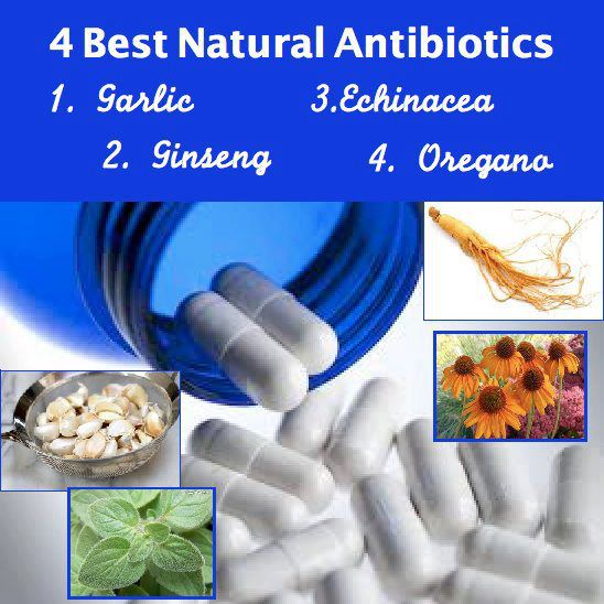 4 BEST ANTIBOTICS