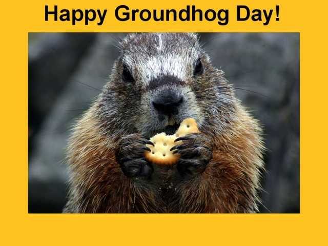 happy gh 2013-Groundhog_Day_Wallpapers