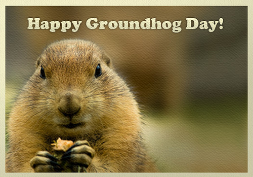 happy ground hog day again