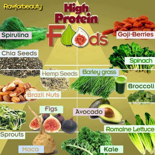 high protien foods