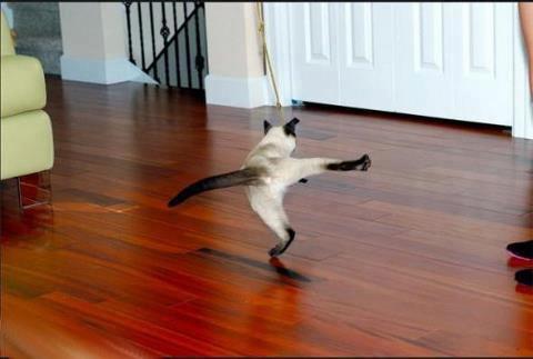 dance-again1