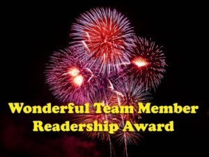 wonderful team member award--