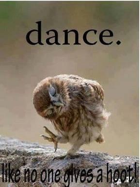 DANCE HOOT