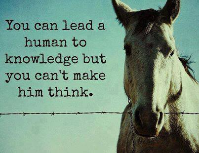 MAKE THEM THINKJ
