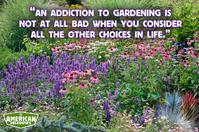 Garden addiction