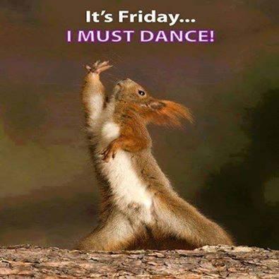 DANCE MUST