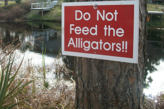 FL 40 DON'T FEED THE GATORS