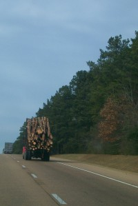 FL MISS-- TREE TRUCK