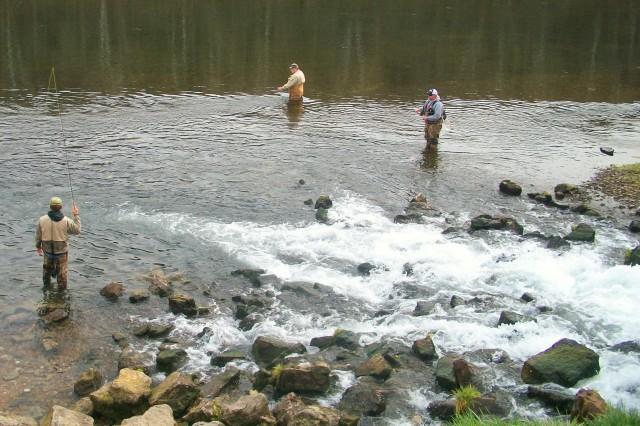 BIR FISHERMEN
