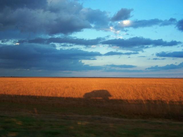 prairie 3 & our pu shadow