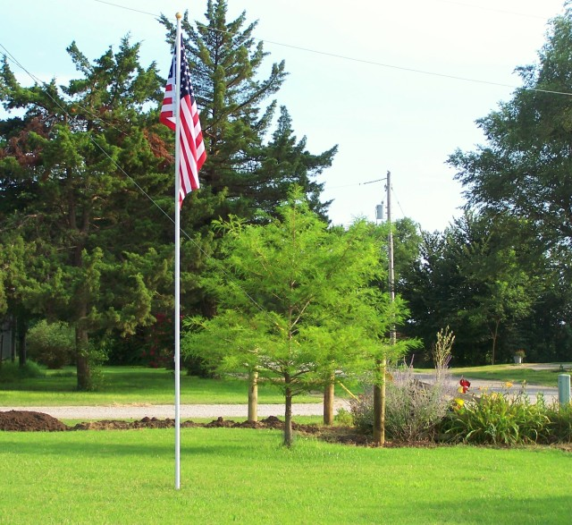 FLAG POLE UP