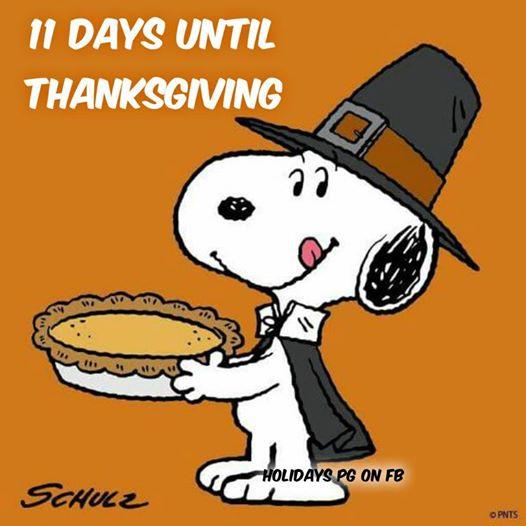11-day-till