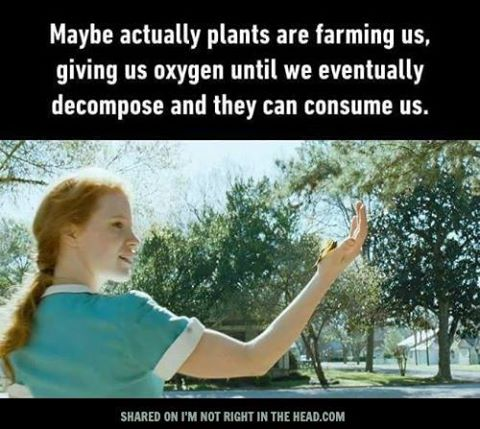 plants-farming-us
