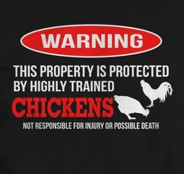 CHICKENS WARNING