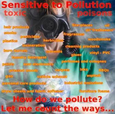 pollutions