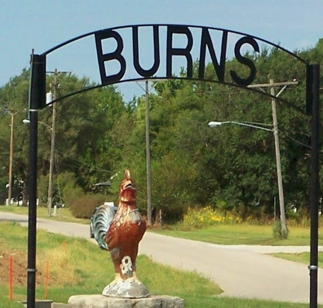 BURNS ROOSTER