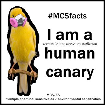 HUMAN CANARY