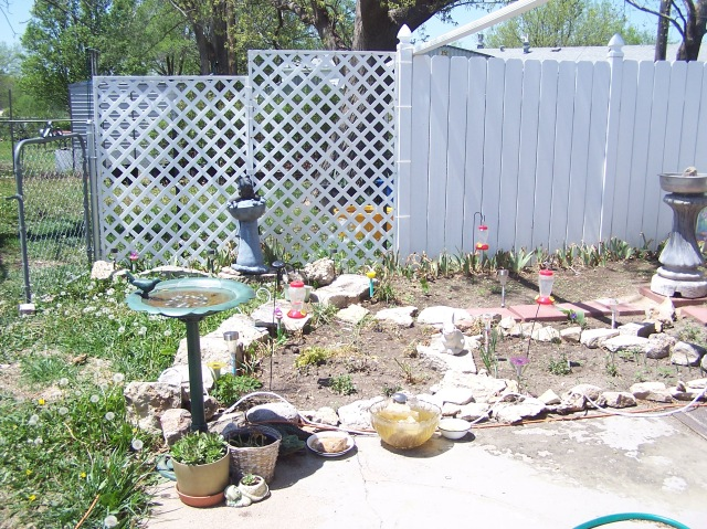 PIC SIDE YARD NOW 7.JPG