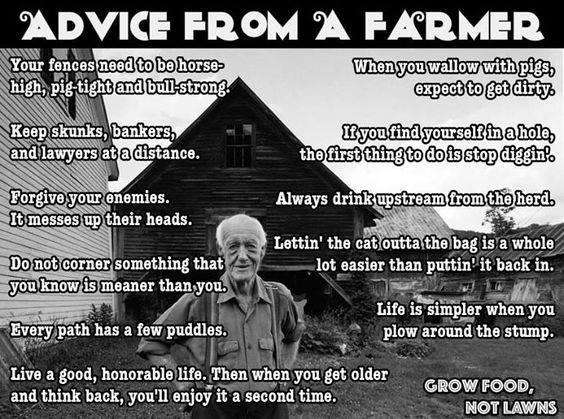 ADVICE FROM A FARMER