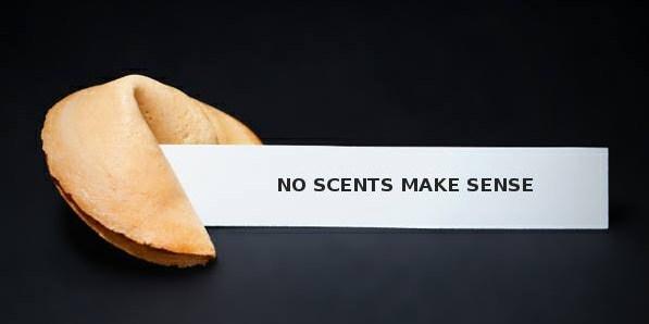 NO SCENTS MAKE SENCE